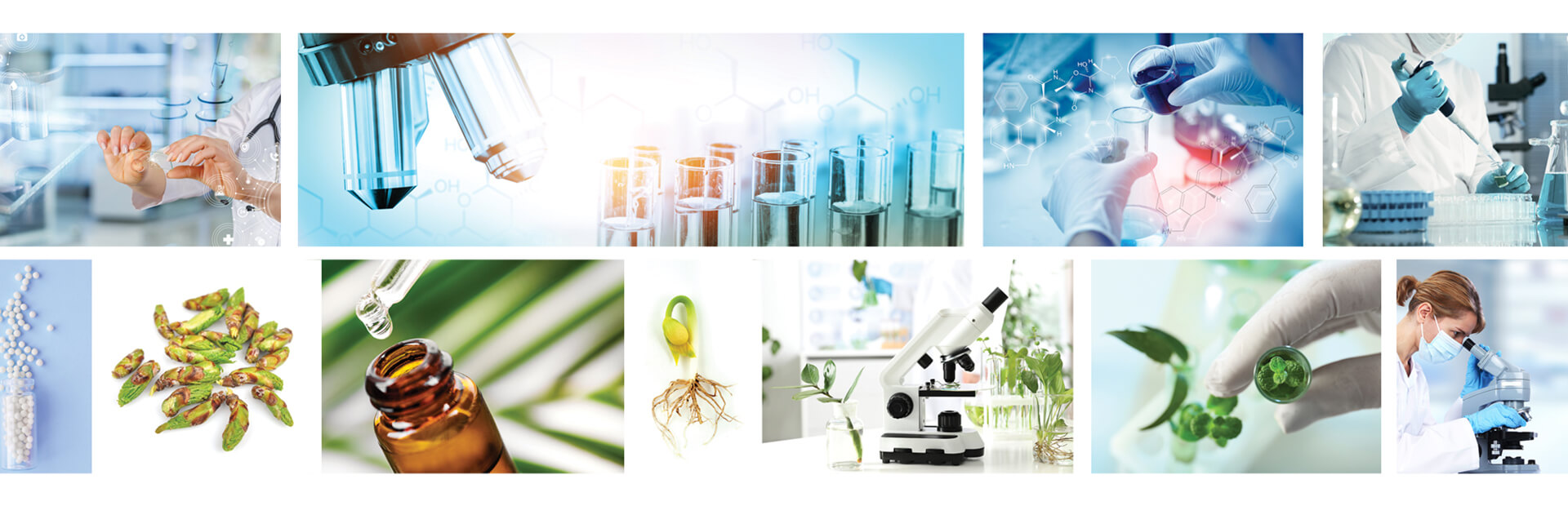 Laboratoarele Plantextrakt - Tehnologii